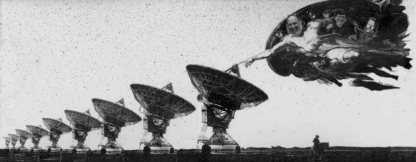 the vla first survey